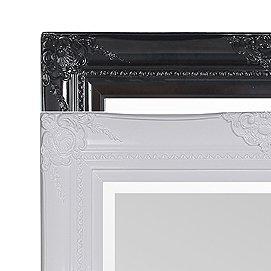 zwarte en witte spiegels cat